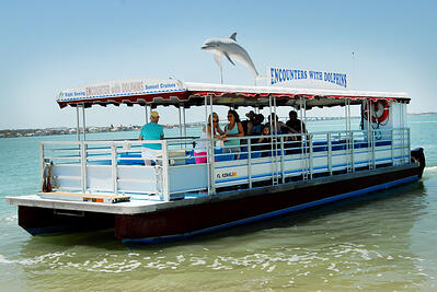 Clearwater dolphin tour