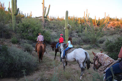 four people riding horses through cactuses