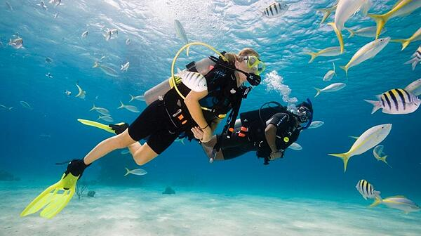 Scuba Diving Clearwater Florida