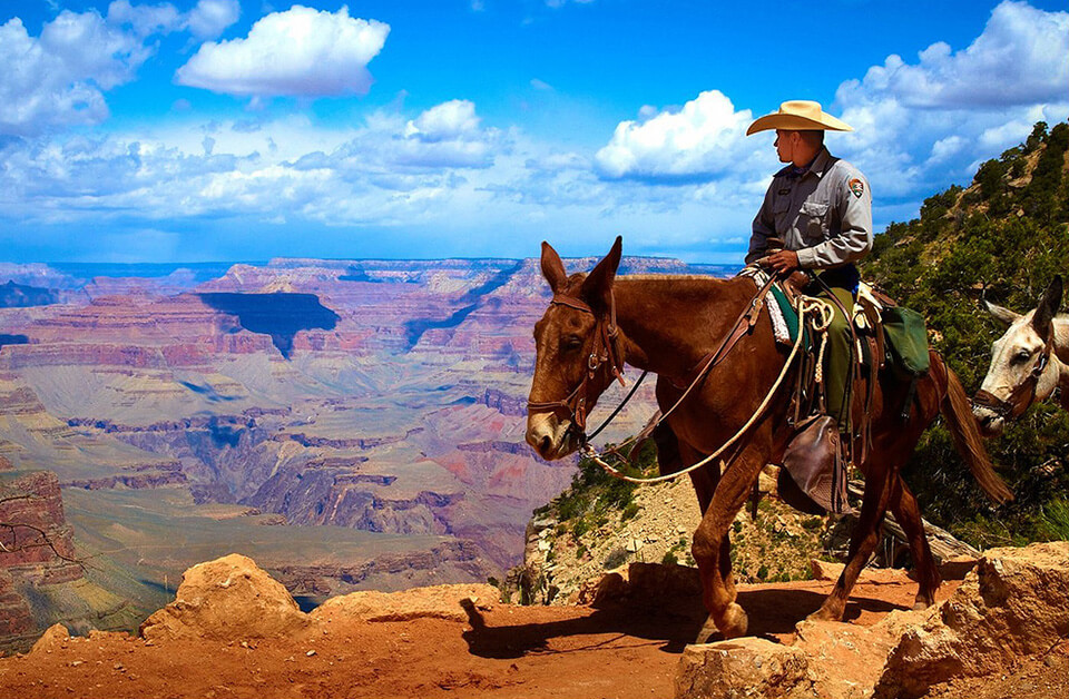 man on horse looking over the red rocks of Sedona